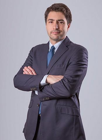 Sylvain Triadou - Directeur de participations